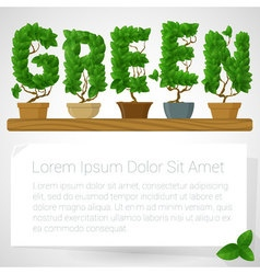 Green fresh houseplant mock up vector image vector image
