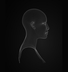 3d head wireframe drawing of wireframe vector image