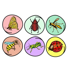 A Set of Insects on Round Background vector