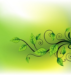 beautiful leaf vector image