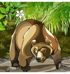 Cartoon big bear in the woods that is suspected vector