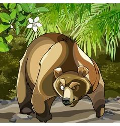 Cartoon big bear in woods that is suspected vector