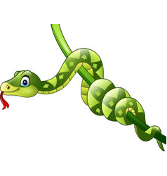 cartoon green snake on branch vector image