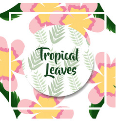 exotic flowers branches botanical label tropical vector image