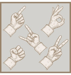 five hands vector image