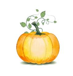 Grunge Pumpkin vector image