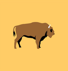isolated flat bison wild animal character icon vector image