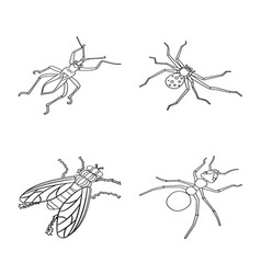 Isolated object fauna and entomology logo vector