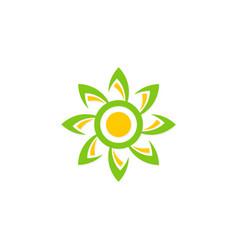 sun flower abstract beauty logo vector image