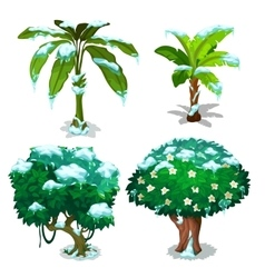 Four trees with green leaves under snow flakes vector