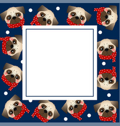 pug dog with red scarf on navy blue banner card vector image