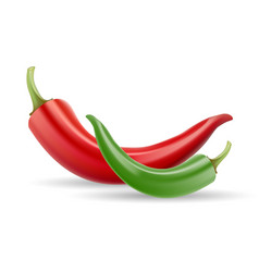 Red chilli pepper healthy organic food isolated vector