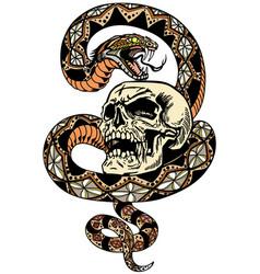 Snake coiled round skull vector