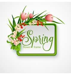 Spring frame with flowers vector image