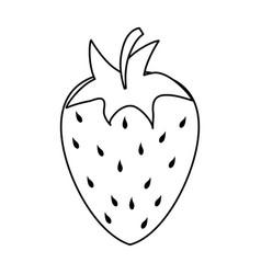 Strawberry sweet fruit vector