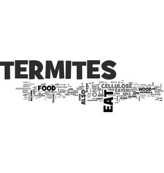 What do termites eat text word cloud concept vector