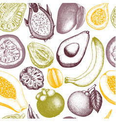 background with tropical fruits vector image