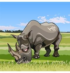 Cartoon big rhino grazing in the meadow vector