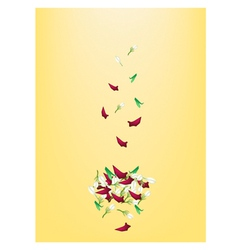 Corolla of Roses and Jasmines on Yellow Background vector image