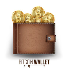 full bitcoin wallet brown color bitcoin vector image