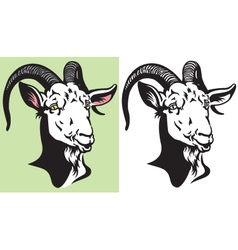 Goat head vector