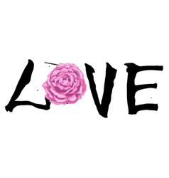 hand written lettering love and beautiful rose vector image