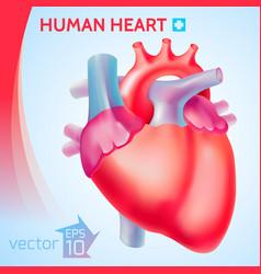 Healthy organ background vector