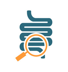 Intestine with magnifying glass colored icon vector
