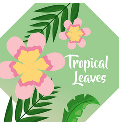pink flowers palm leaf banner tropical leaves vector image