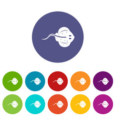 Whale icons set flat vector