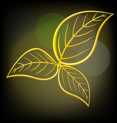 Gold leaves vector image