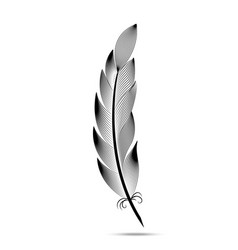 black and white contour feather engraving vector image
