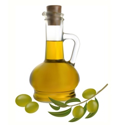 bottle of olive oil vector image