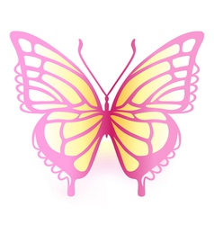 Colored butterfly vector