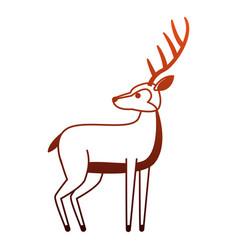 deer wild animal on red lines vector image