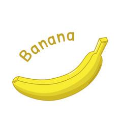Isolated banana icon vector
