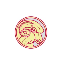 Merino Ram Sheep Head Circle Mono Line vector
