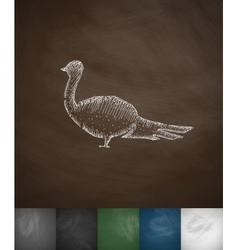 Pheasant icon Hand drawn vector