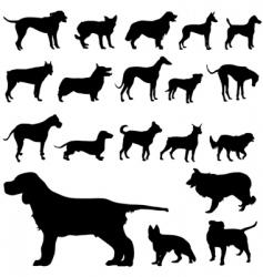 set of dog vector image