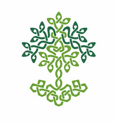 Celtic tree life green weaved ornament vector