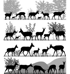 herd of pronghorns vector image