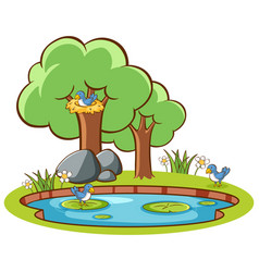 isolated picture birds and pond vector image