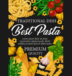 Italian pasta spaghetti and fusilli with spices vector