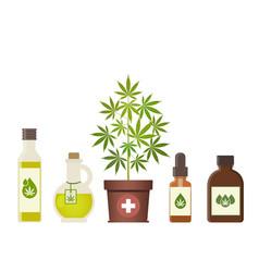 Marijuana plant and cannabis oil medical vector