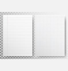Paper lines template on transparent backdrop vector