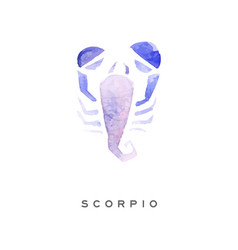 scorpion zodiac sign part of zodiacal system vector image