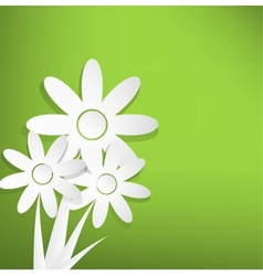 Spring flowers on green background vector image