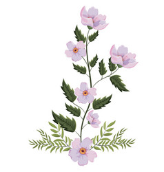 spring flowers with leaves vector image