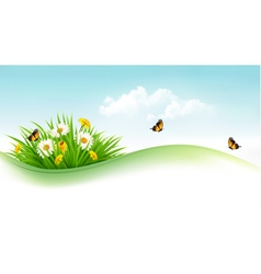 Summer background with grass flowers and vector image vector image