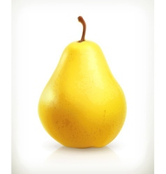 Pear summer fruit icon vector image vector image